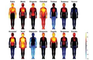 emociones-en-el-cuerpo